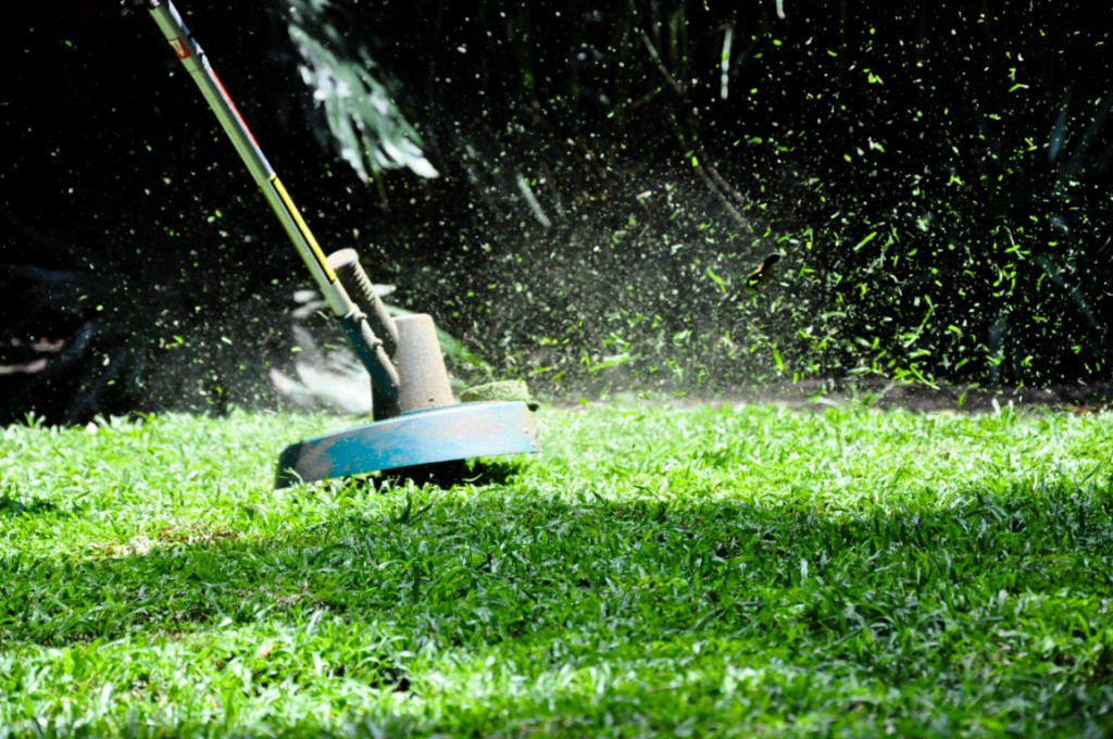 What is the best weed eater for the money?